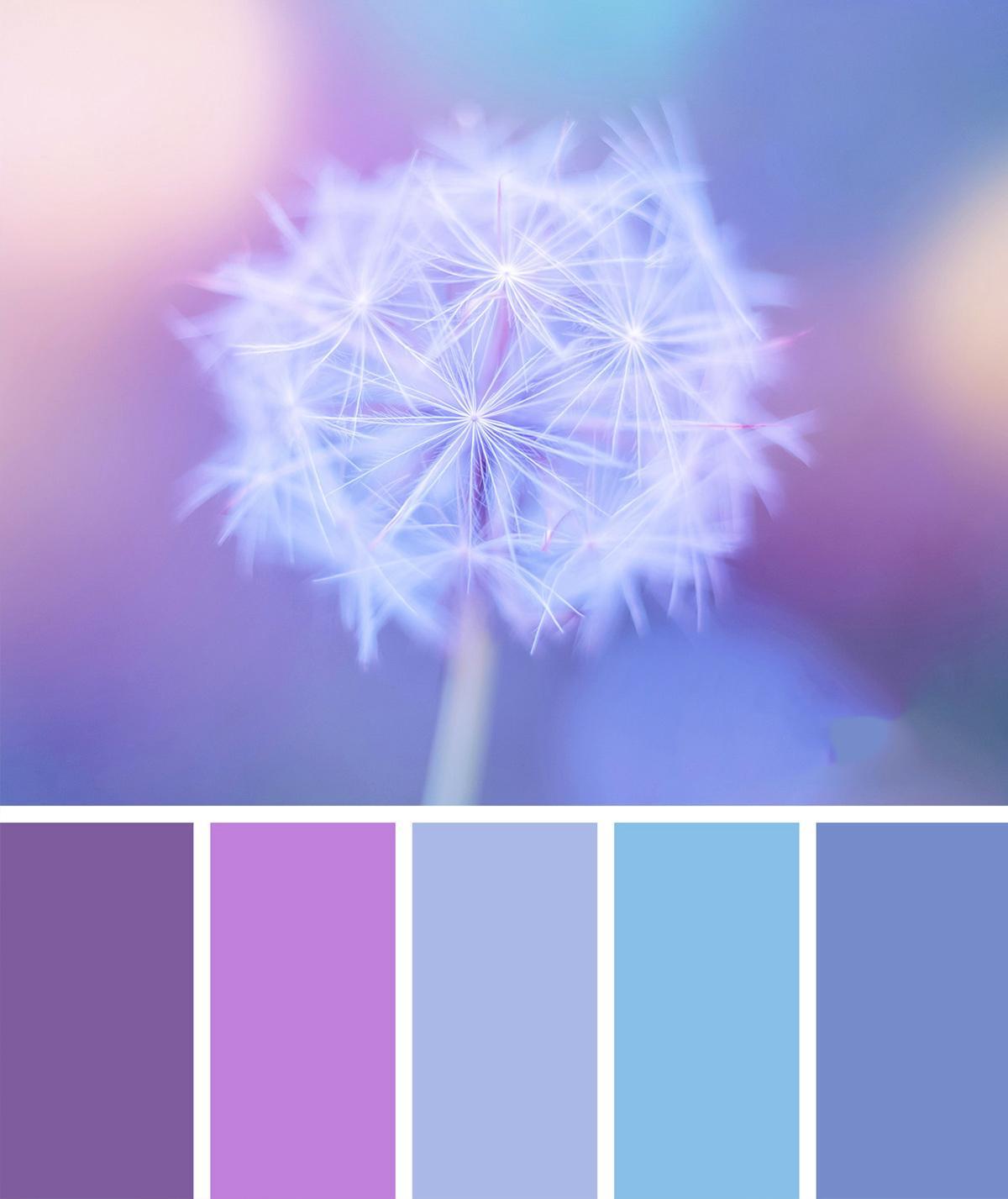 gam màu pastel nhẹ nhàng