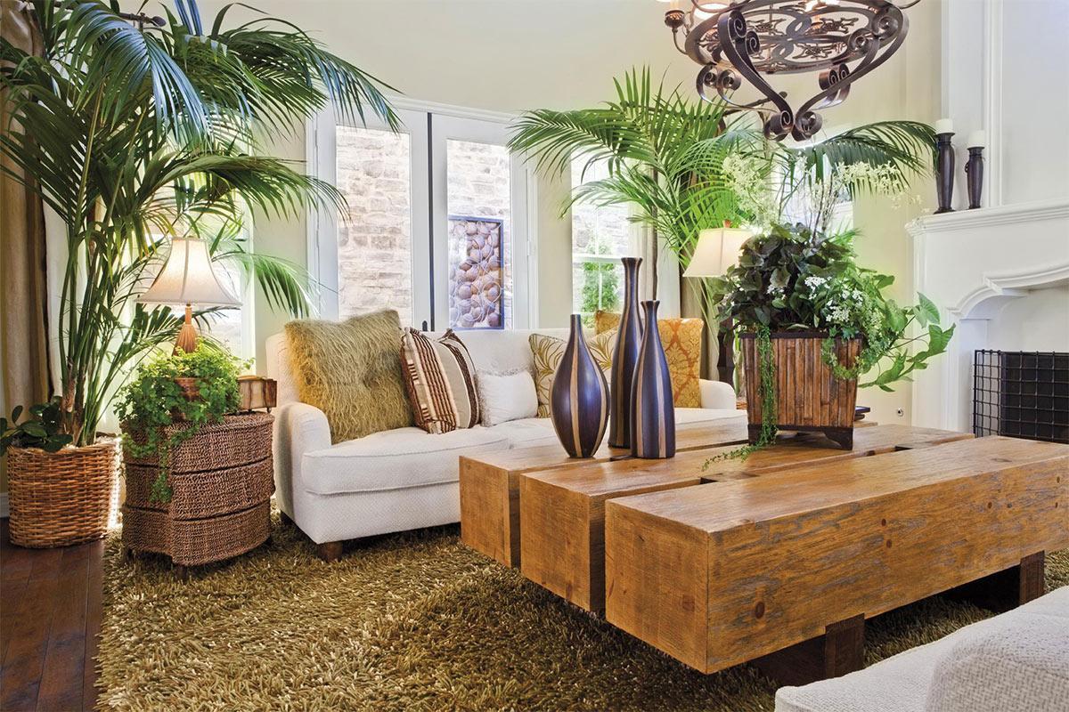 Trang trí phòng khách đẹp với cây xanh