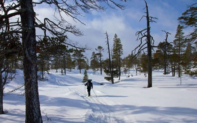 vùng đất scandinavian phủ tuyết