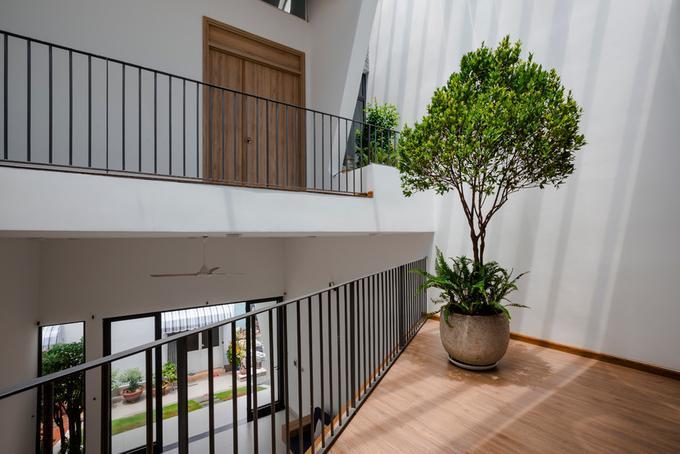 Trong nhà không có quá nhiều cây nhưng được bố trí hợp lý, gọn gàng tạo cảm giác xanh tươi. Cây cũng nhận đủ ánh sáng nên sẽ dễ dàng phát triển.