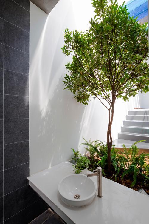 Trong nhà có những góc nhỏ xinh xắn, thú vị như bồn rửa tay ngoài trời ngay cạnh bồn cây xanh.