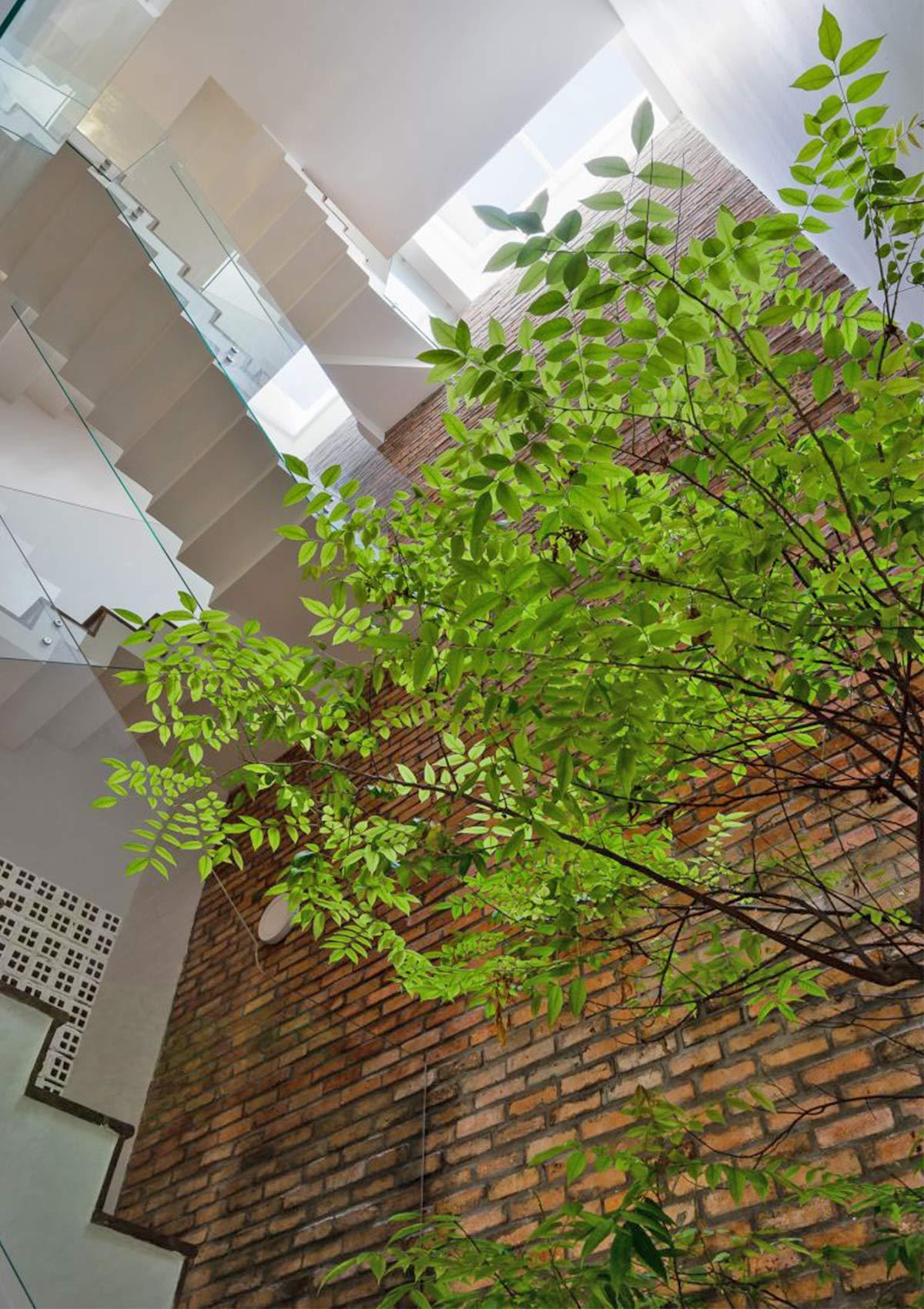 Đem cả trời hoa nắng vào bên trong không gian nội thất ngôi nhà ống tại Sài Gòn